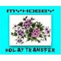Kolay Transfer 25x35